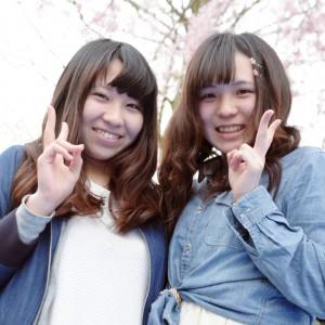 2016_sakura